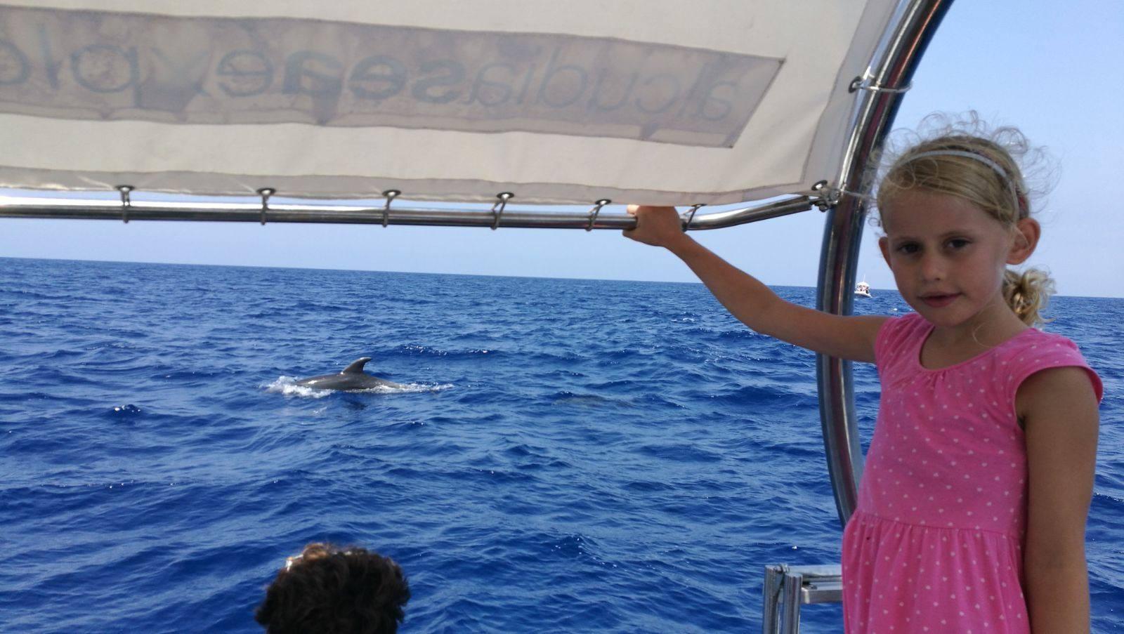 Alcudia Sea Explorer - Boat trips